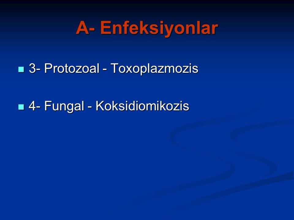 A- Enfeksiyonlar 3- Protozoal - Toxoplazmozis 3- Protozoal - Toxoplazmozis 4- Fungal - Koksidiomikozis 4- Fungal - Koksidiomikozis