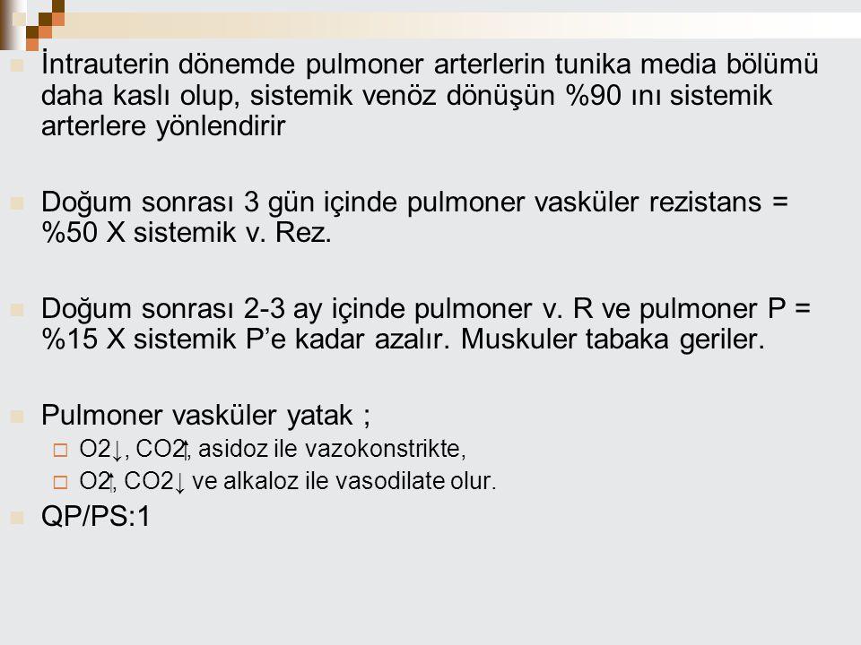 İntrauterin dönemde pulmoner arterlerin tunika media bölümü daha kaslı olup, sistemik venöz dönüşün %90 ını sistemik arterlere yönlendirir Doğum sonra