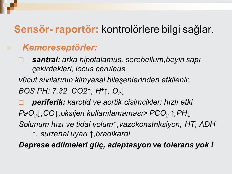 Sensör- raportör: kontrolörlere bilgi sağlar. Kemoreseptörler:  santral: arka hipotalamus, serebellum,beyin sapı çekirdekleri, locus ceruleus vücut s