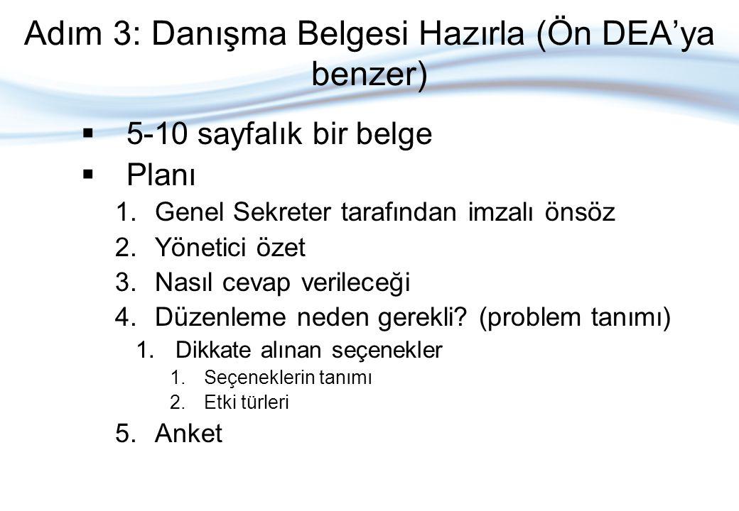 Adım 3: Danışma Belgesi Hazırla (Ön DEA'ya benzer)  5-10 sayfalık bir belge  Planı 1.Genel Sekreter tarafından imzalı önsöz 2.Yönetici özet 3.Nasıl