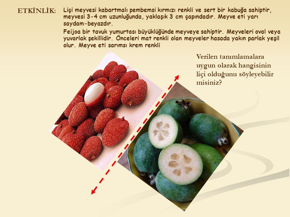 ETKİNLİK: Liçi meyvesi kabartmalı pembemsi kırmızı renkli ve sert bir kabuğa sahiptir, meyvesi 3-4 cm uzunluğunda, yaklaşık 3 cm çapındadır. Meyve eti