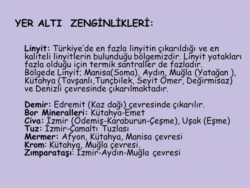 YER ALTI ZENGİNLİKLERİ: Linyit: Türkiye'de en fazla linyitin çıkarıldığı ve en kaliteli linyitlerin bulunduğu bölgemizdir.