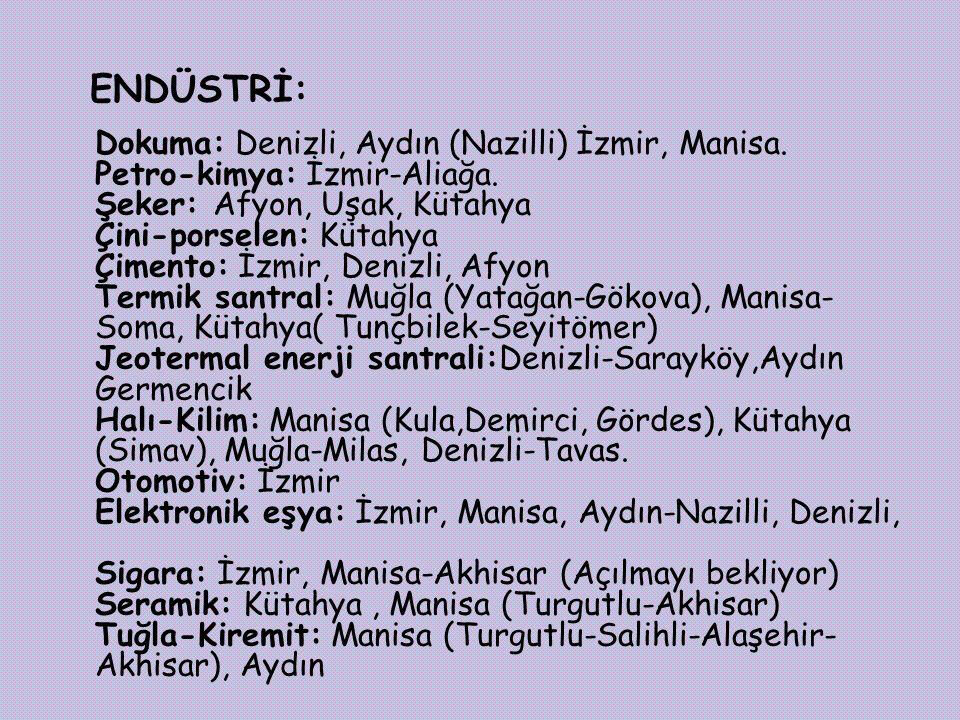 ENDÜSTRİ: Dokuma: Denizli, Aydın (Nazilli) İzmir, Manisa.