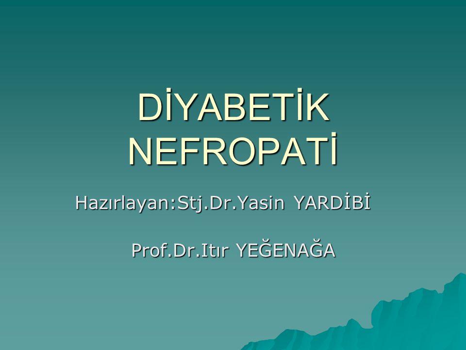 DİYABETİK NEFROPATİ Hazırlayan:Stj.Dr.Yasin YARDİBİ Prof.Dr.Itır YEĞENAĞA