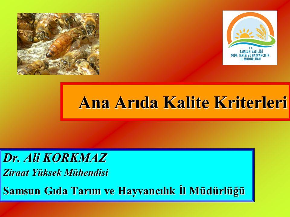 Ana Arıda Kalite Kriterleri Dr. Ali KORKMAZ Ziraat Yüksek Mühendisi Samsun Gıda Tarım ve Hayvancılık İl Müdürlüğü