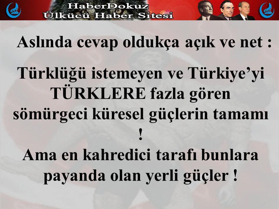 Aslında cevap oldukça açık ve net : Türklüğü istemeyen ve Türkiye'yi TÜRKLERE fazla gören sömürgeci küresel güçlerin tamamı .