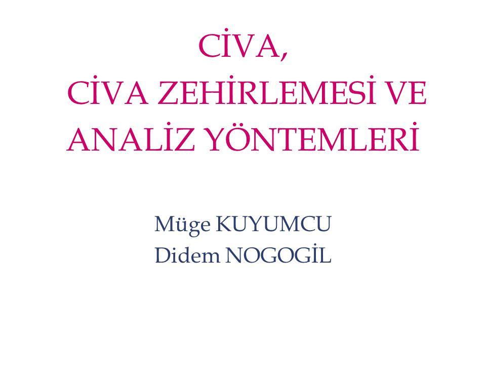 Elementel Civa Daha Çok Nerelerde Etkilidir.
