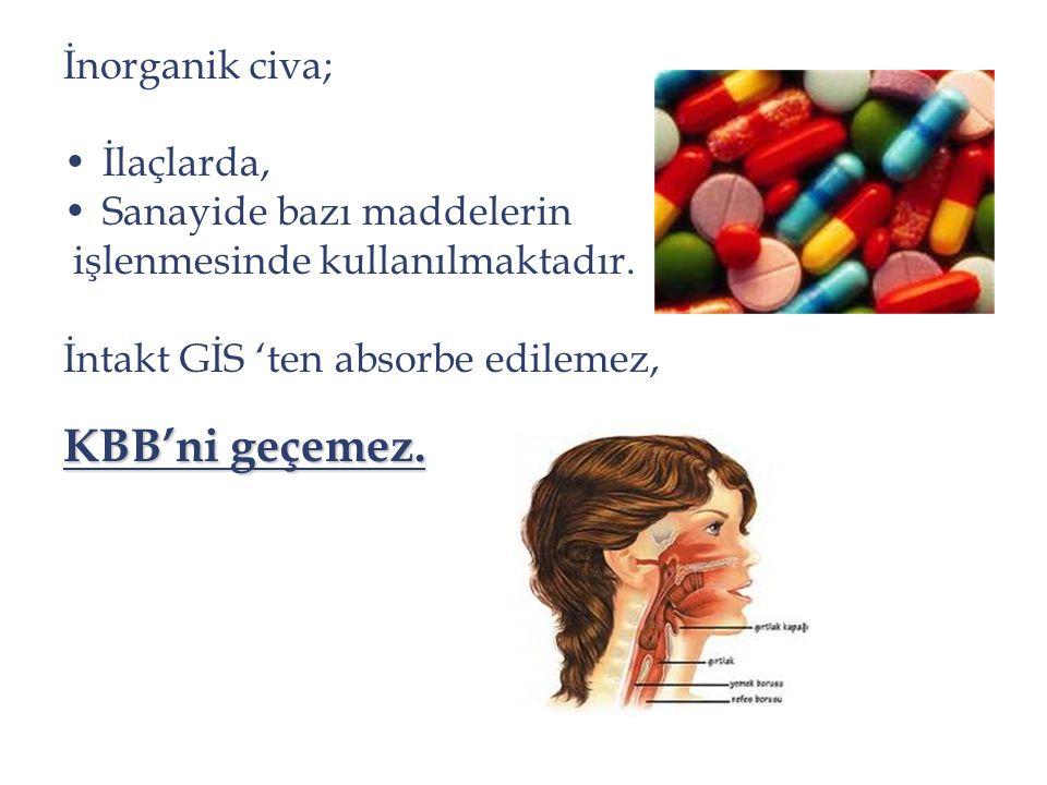 İnorganik civa; İlaçlarda, Sanayide bazı maddelerin işlenmesinde kullanılmaktadır. İntakt GİS 'ten absorbe edilemez, KBB'ni geçemez.
