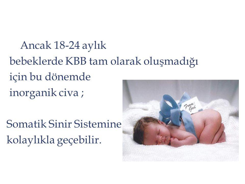 Ancak 18-24 aylık bebeklerde KBB tam olarak oluşmadığı için bu dönemde inorganik civa ; Somatik Sinir Sistemine kolaylıkla geçebilir.