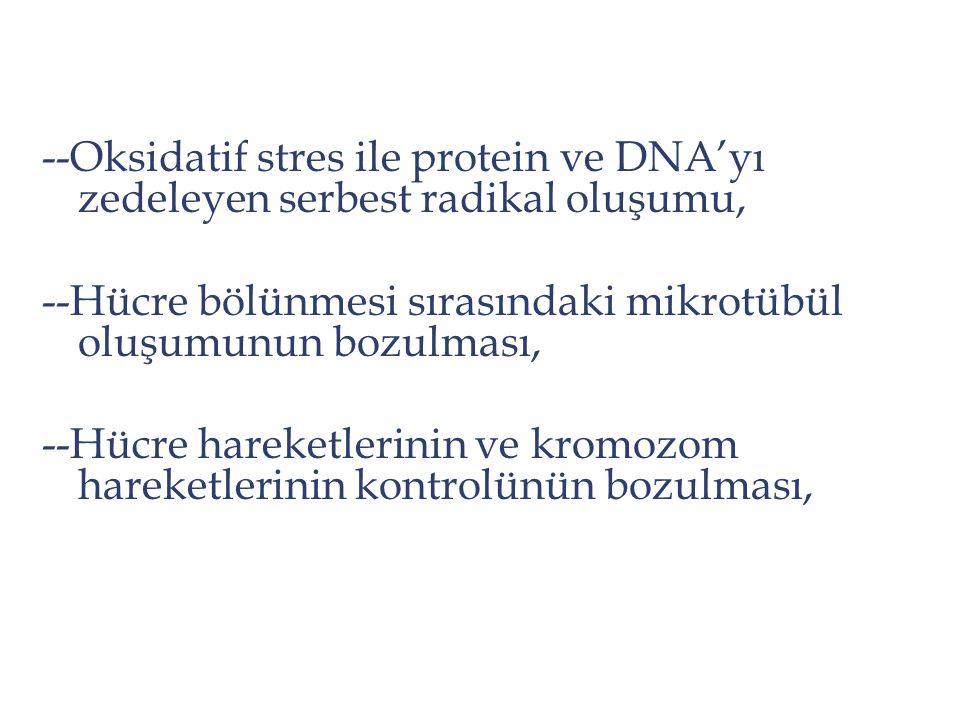 --Oksidatif stres ile protein ve DNA'yı zedeleyen serbest radikal oluşumu, --Hücre bölünmesi sırasındaki mikrotübül oluşumunun bozulması, --Hücre hare