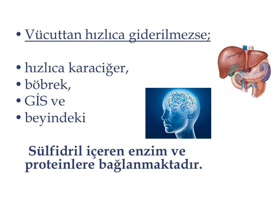 Vücuttan hızlıca giderilmezse; hızlıca karaciğer, böbrek, GİS ve beyindeki Sülfidril içeren enzim ve proteinlere bağlanmaktadır.