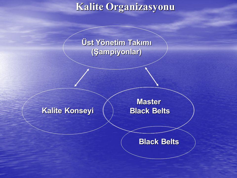 Üst Yönetim Takımı (Şampiyonlar) Kalite Konseyi Master Black Belts Kalite Organizasyonu