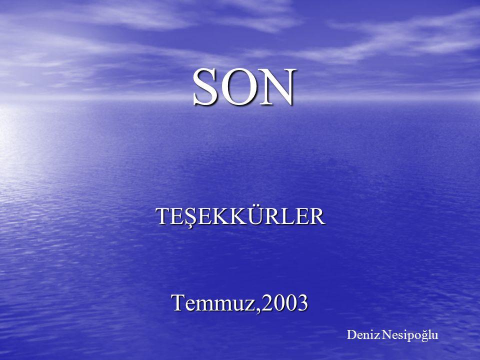 SON TEŞEKKÜRLERTemmuz,2003 Deniz Nesipoğlu