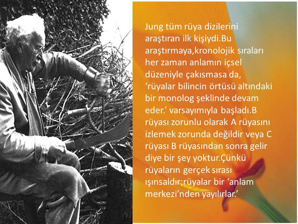 Jung tüm rüya dizilerini araştıran ilk kişiydi.Bu araştırmaya,kronolojik sıraları her zaman anlamın içsel düzeniyle çakısmasa da, 'rüyalar bilincin ör