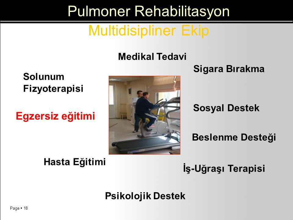 Page  18 Medikal Tedavi İş-Uğraşı Terapisi Psikolojik Destek Beslenme Desteği Sosyal Destek Respiratory Physiotherapy Egzersiz eğitimi Education Siga