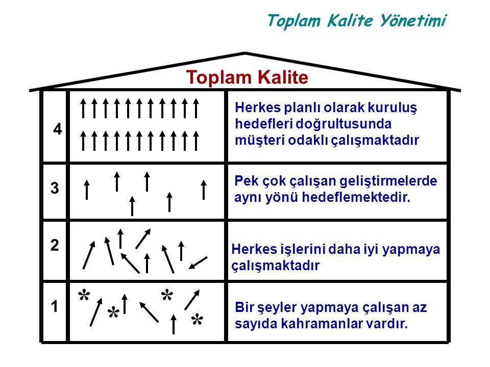 Toplam Kalite Yönetimi Herkes planlı olarak kuruluş hedefleri doğrultusunda müşteri odaklı çalışmaktadır Pek çok çalışan geliştirmelerde aynı yönü hed