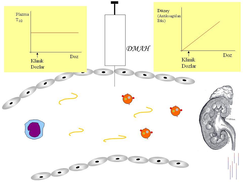 Heparin ve DMAH'lerin Farmakokinetik Özelliklerinin Kıyaslanması HeparinDMAH Biyoyararlanım % Düşük Doz3090 Yüksek Doz90 Eliminasyon Düşük DozHücresel bağlanma Renal Yüksek DozRenal YarıömürDoza bağlı (30 -4 saat) Dozdan bağımsız (2-4 saat)