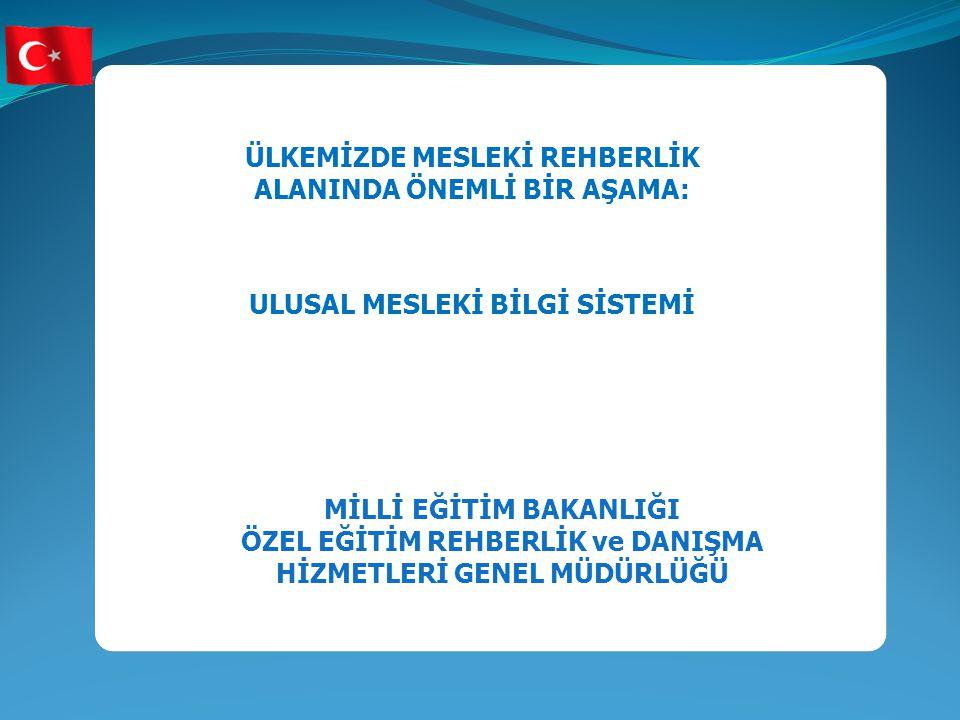Projenin Çıktıları Kurumlar arası işbirliği Ulusal Mesleki Bilgi Sistemi Program Gelişimi Personel Gelişimi 32