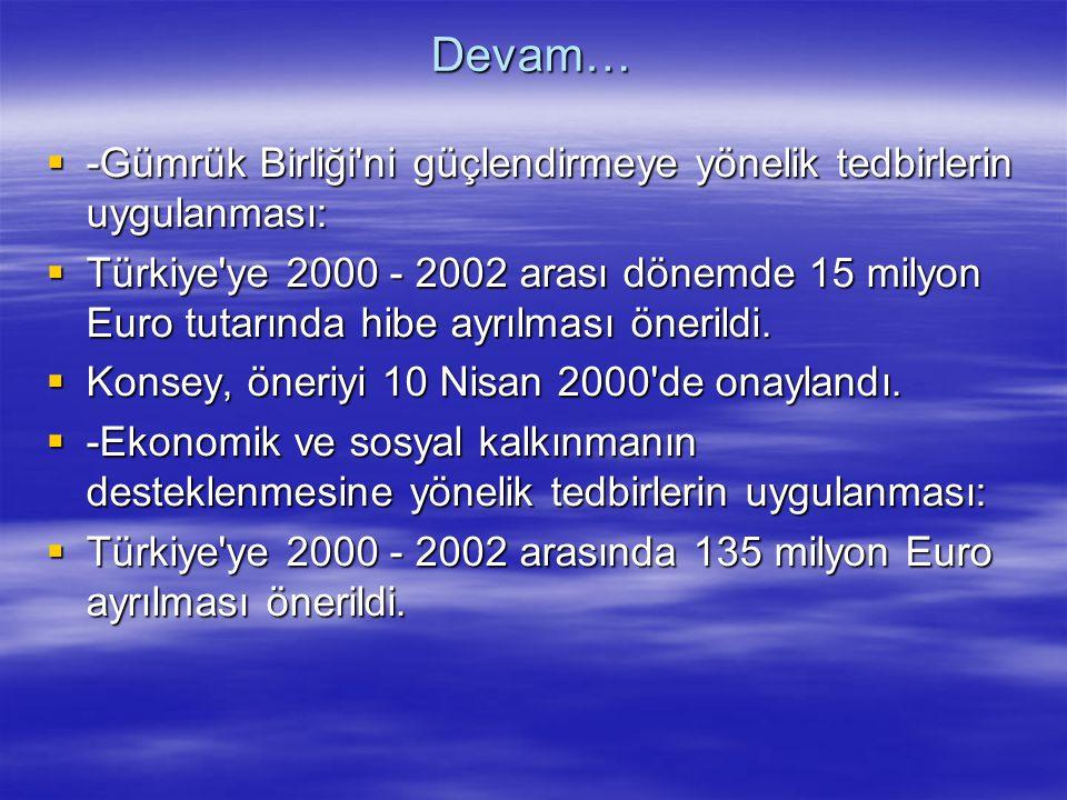 Devam…  -Gümrük Birliği'ni güçlendirmeye yönelik tedbirlerin uygulanması:  Türkiye'ye 2000 - 2002 arası dönemde 15 milyon Euro tutarında hibe ayrılm
