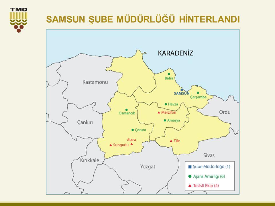 SAMSUN ŞUBE MÜDÜRLÜĞÜ HİNTERLANDI