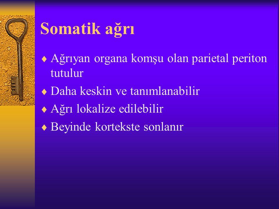 Somatik ağrı  Ağrıyan organa komşu olan parietal periton tutulur  Daha keskin ve tanımlanabilir  Ağrı lokalize edilebilir  Beyinde kortekste sonlanır
