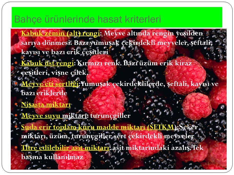 Bahçe ürünlerinde hasat kriterleri Kabuk zemin (alt) rengi: Meyve altında rengin ye ş ilden sarıya dönmesi. Bazı yumu ş ak çekirdekli meyveler, ş efta