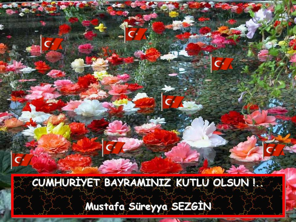 CUMHURİYET BAYRAMINIZ KUTLU OLSUN !..Mustafa Süreyya SEZGİN CUMHURİYET BAYRAMINIZ KUTLU OLSUN !..