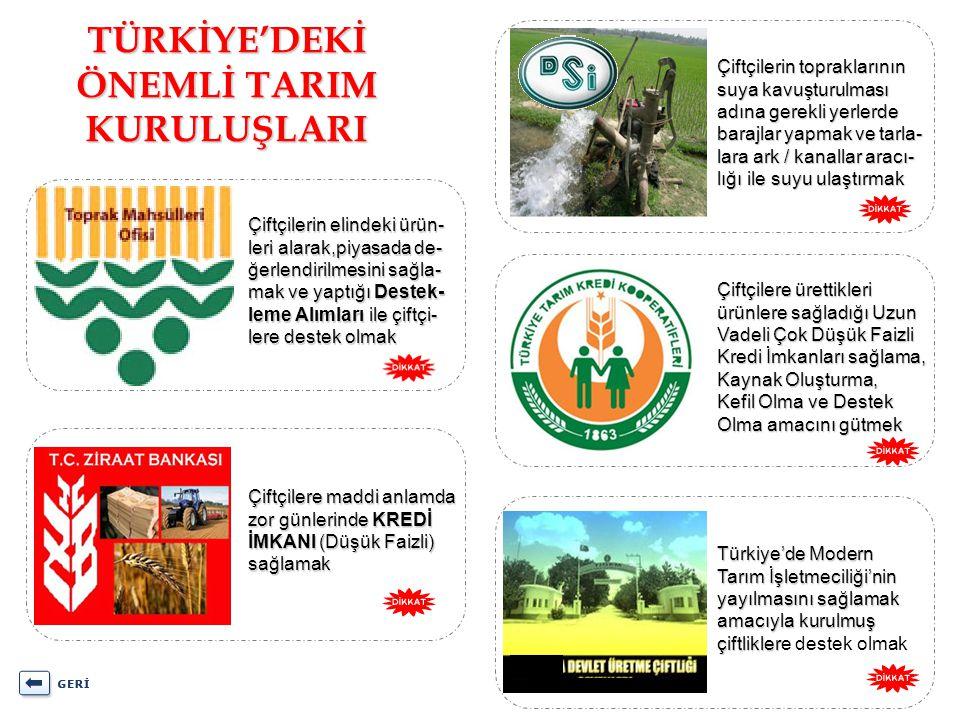 TÜRKİYE'DEKİ ÖNEMLİ TARIM KURULUŞLARI Çiftçilerin elindeki ürün- leri alarak,piyasada de- ğerlendirilmesini sağla- mak ve yaptığı Destek- leme Alımlar
