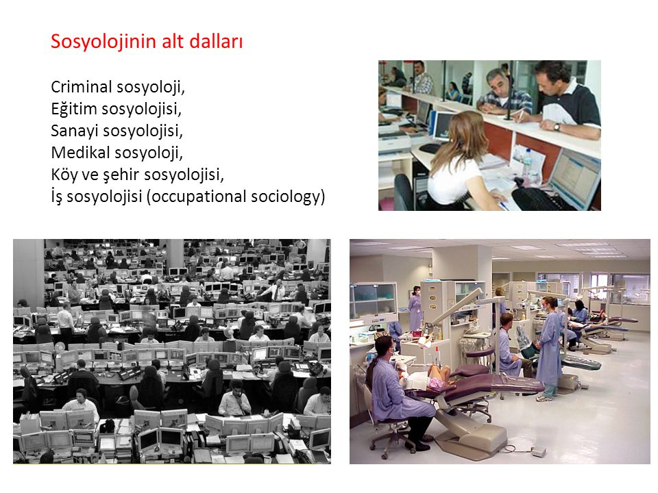 Sosyolojinin alt dalları Criminal sosyoloji, Eğitim sosyolojisi, Sanayi sosyolojisi, Medikal sosyoloji, Köy ve şehir sosyolojisi, İş sosyolojisi (occu