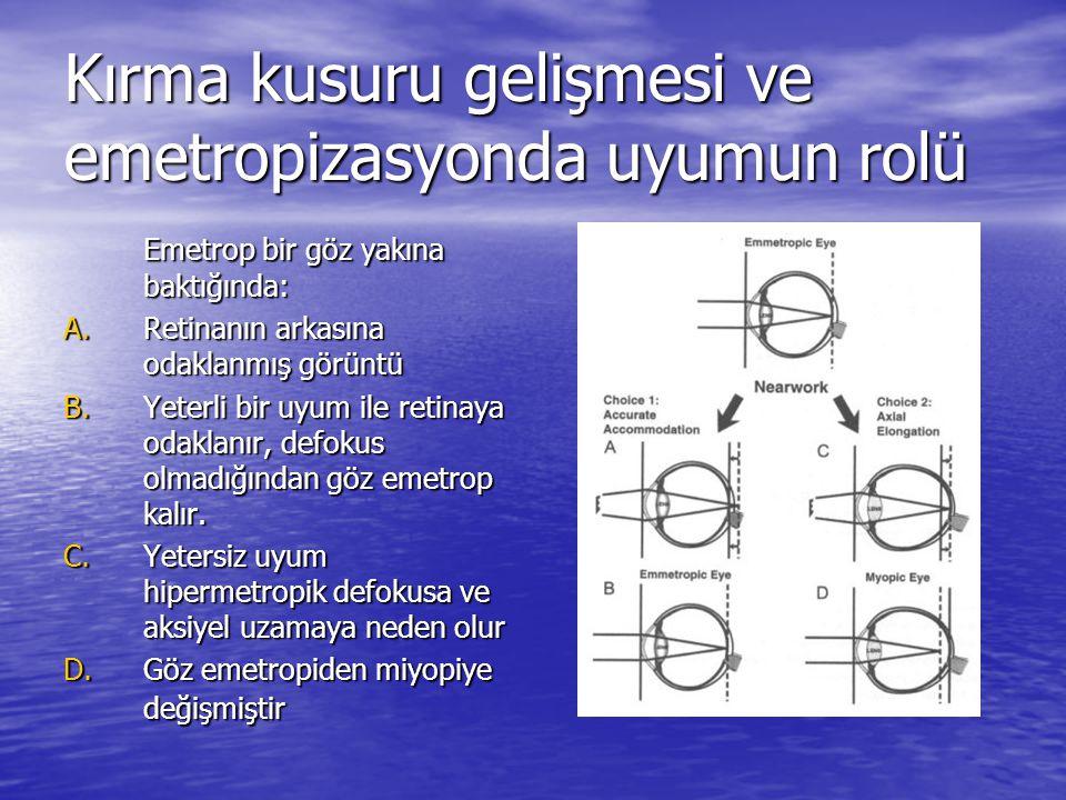 Kırma kusuru gelişmesi ve emetropizasyonda uyumun rolü Emetrop bir göz yakına baktığında: A.Retinanın arkasına odaklanmış görüntü B.Yeterli bir uyum i