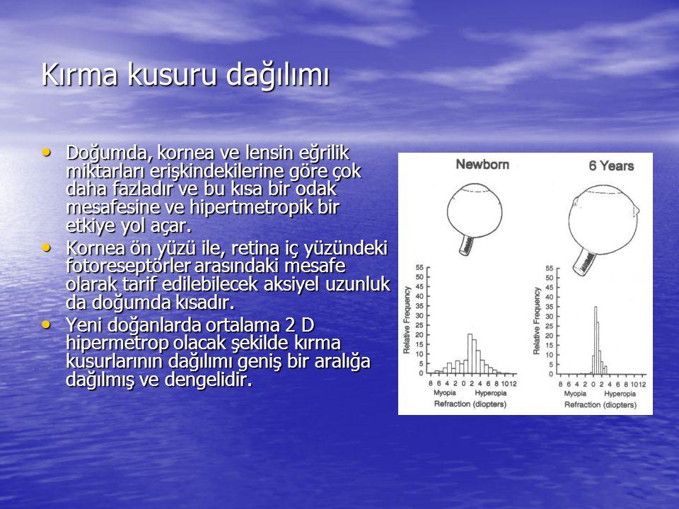 Hayvan çalışmaları A) Uzaktan gelen ışınlar retinaya odaklanmış B) Eksi mercek odağı retinanın arkasına taşır ve hipermetropik defokus oluşur C) Arka segment uzayıp retinayı odağa getirir D) Mercek çıkarılınca göz miyop olmuştur