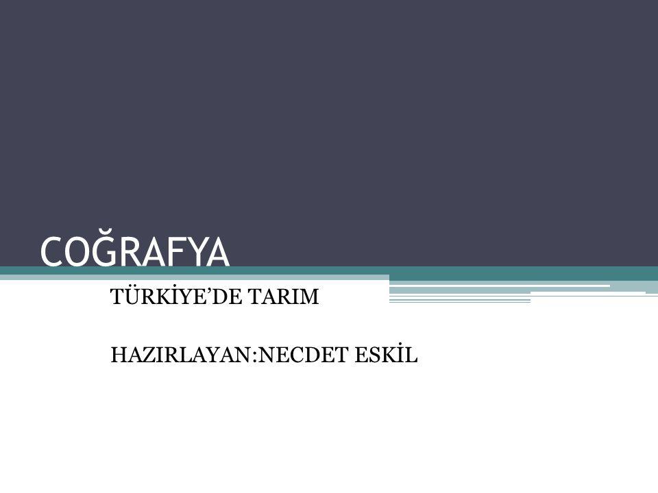 COĞRAFYA TÜRKİYE'DE TARIM HAZIRLAYAN:NECDET ESKİL