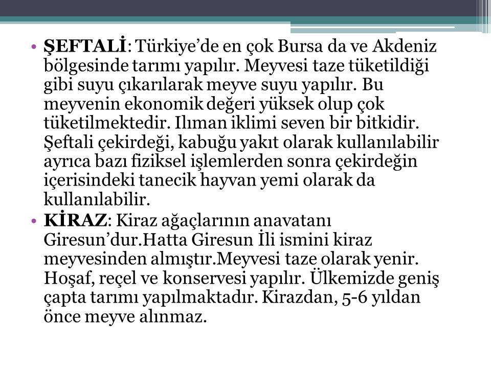 ŞEFTALİ: Türkiye'de en çok Bursa da ve Akdeniz bölgesinde tarımı yapılır.