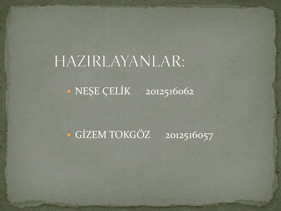 NEŞE ÇELİK 2012516062 GİZEM TOKGÖZ 2012516057
