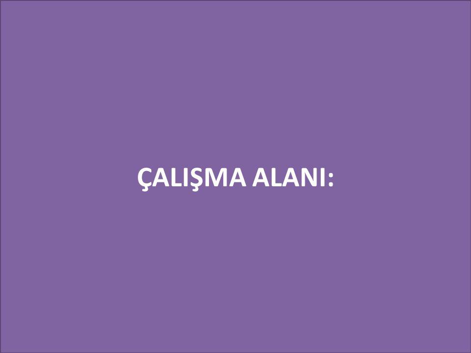 ÇALIŞMA ALANI: