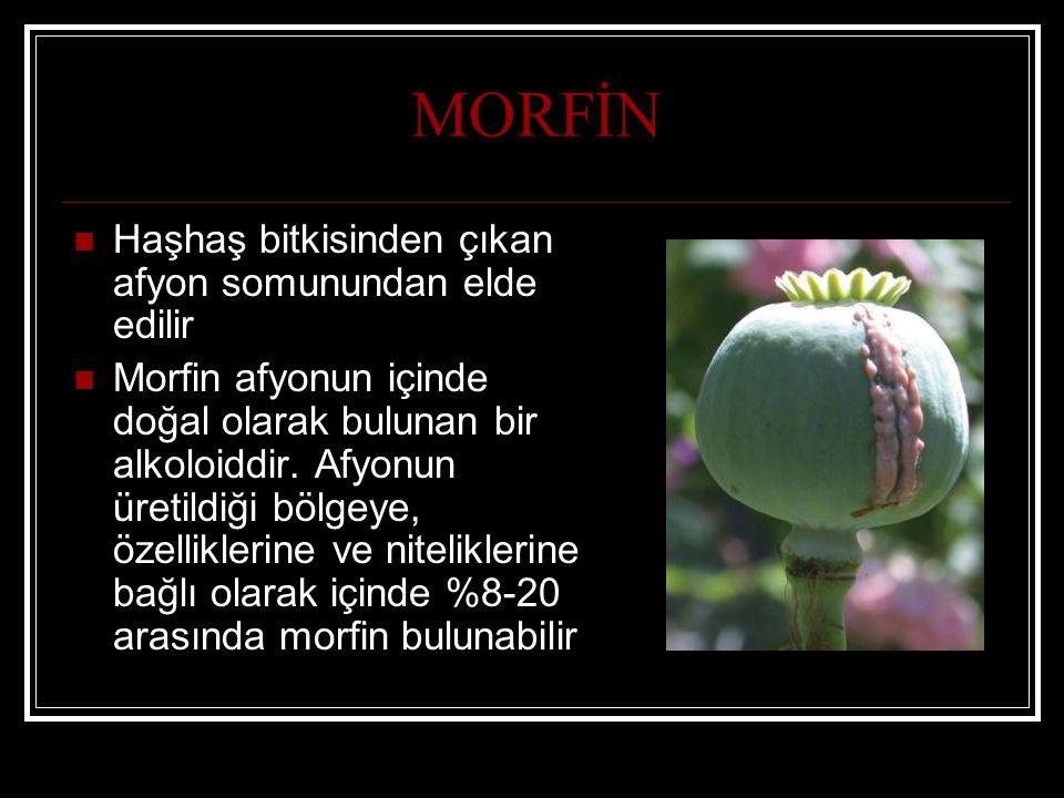 MORFİN Haşhaş bitkisinden çıkan afyon somunundan elde edilir Morfin afyonun içinde doğal olarak bulunan bir alkoloiddir. Afyonun üretildiği bölgeye, ö
