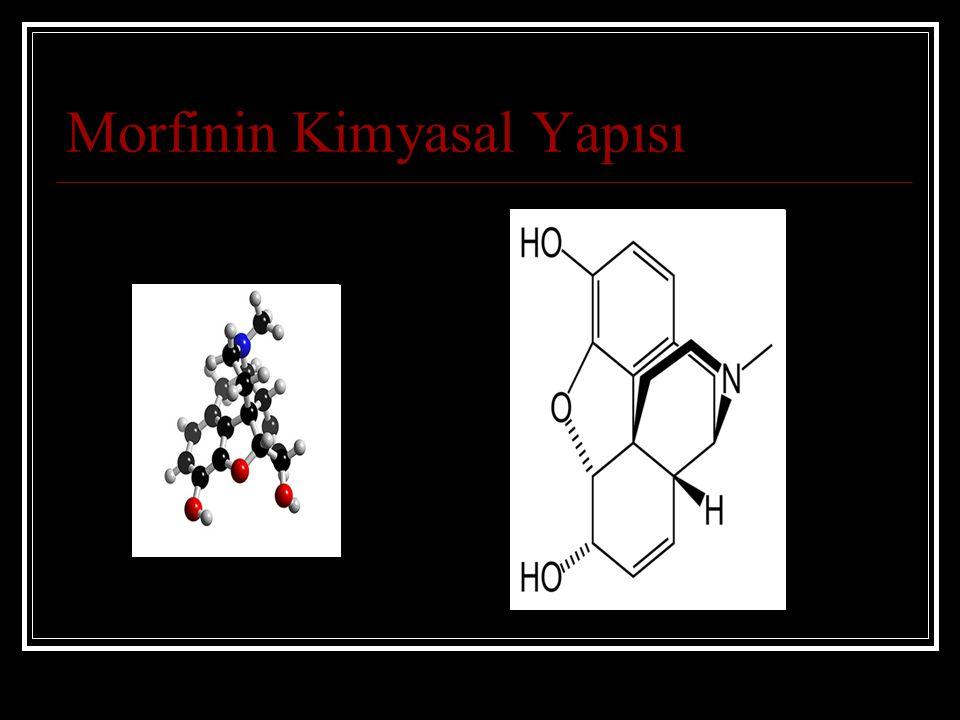 Morfinin Kimyasal Yapısı