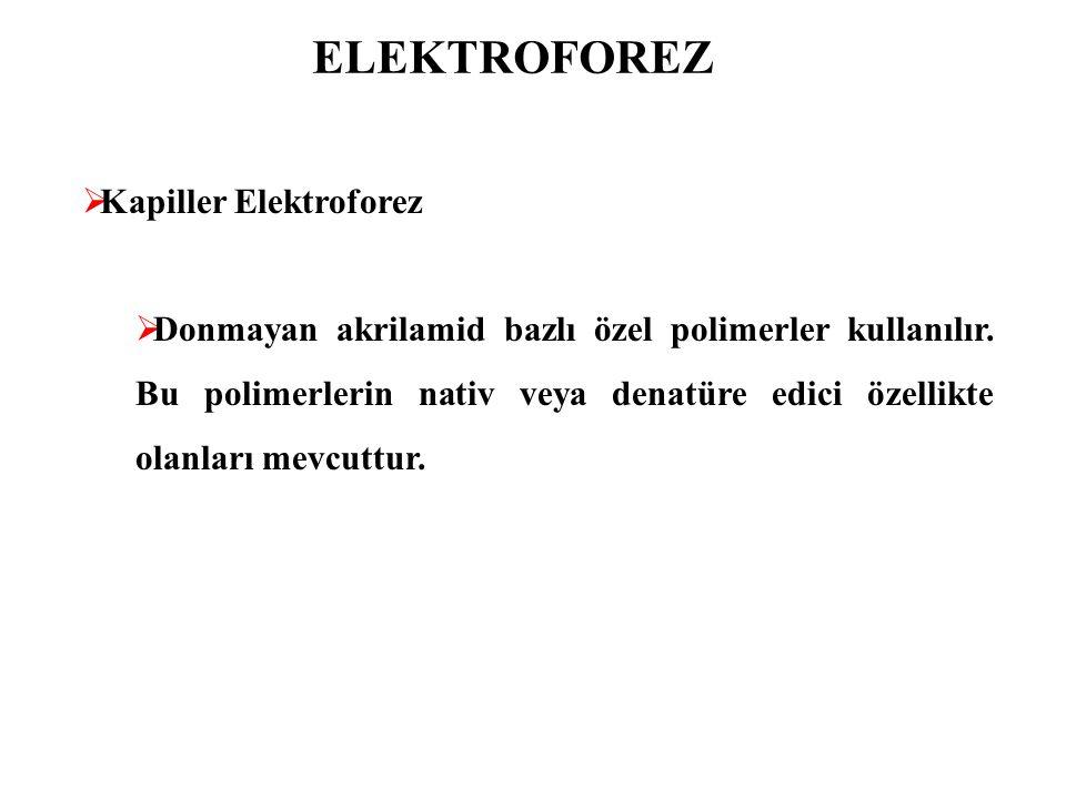 ELEKTROFOREZ  Kapiller Elektroforez  Donmayan akrilamid bazlı özel polimerler kullanılır. Bu polimerlerin nativ veya denatüre edici özellikte olanla