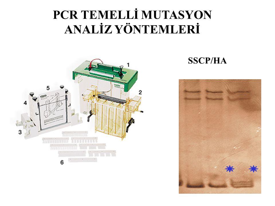 SSCP/HA