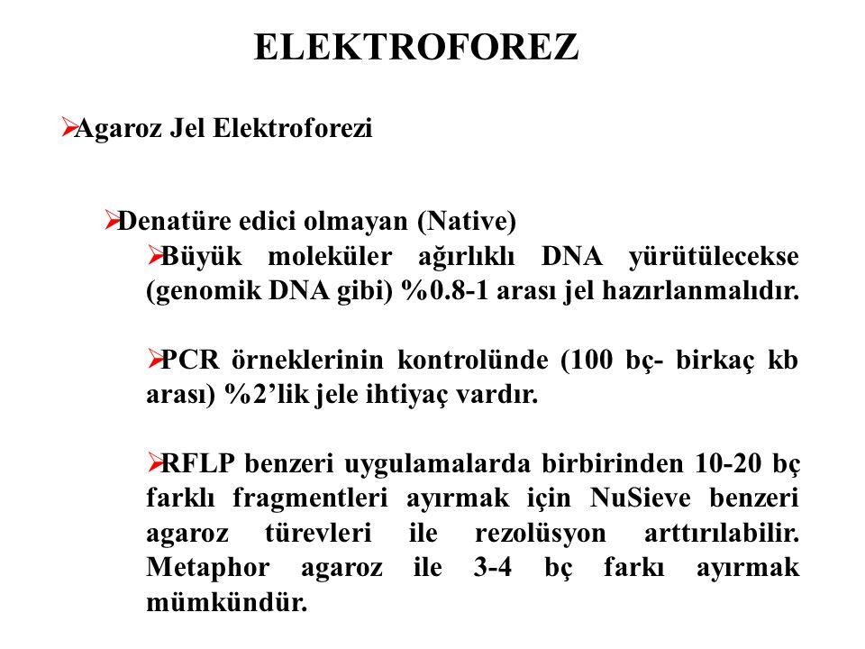 ELEKTROFOREZ  Agaroz Jel Elektroforezi  Denatüre edici olmayan (Native)  Büyük moleküler ağırlıklı DNA yürütülecekse (genomik DNA gibi) %0.8-1 aras