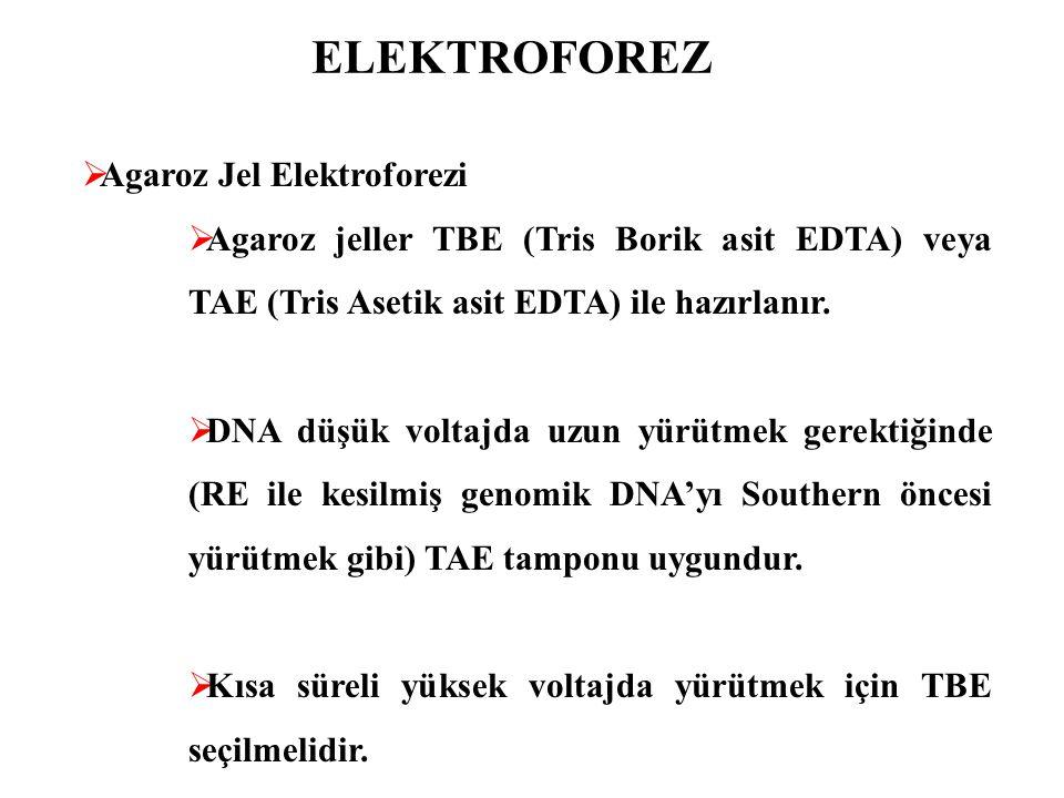 ELEKTROFOREZ  Agaroz Jel Elektroforezi  Agaroz jeller TBE (Tris Borik asit EDTA) veya TAE (Tris Asetik asit EDTA) ile hazırlanır.  DNA düşük voltaj