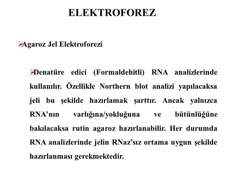 ELEKTROFOREZ  Agaroz Jel Elektroforezi  Denatüre edici (Formaldehitli) RNA analizlerinde kullanılır. Özellikle Northern blot analizi yapılacaksa jel