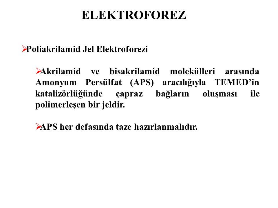 ELEKTROFOREZ  Poliakrilamid Jel Elektroforezi  Akrilamid ve bisakrilamid tampon çözeltide karıştırılarak çözüldükten sonra filtreden geçirilerek süzülmelidir.
