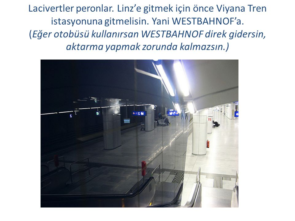 Lacivertler peronlar. Linz'e gitmek için önce Viyana Tren istasyonuna gitmelisin. Yani WESTBAHNOF'a. (Eğer otobüsü kullanırsan WESTBAHNOF direk giders