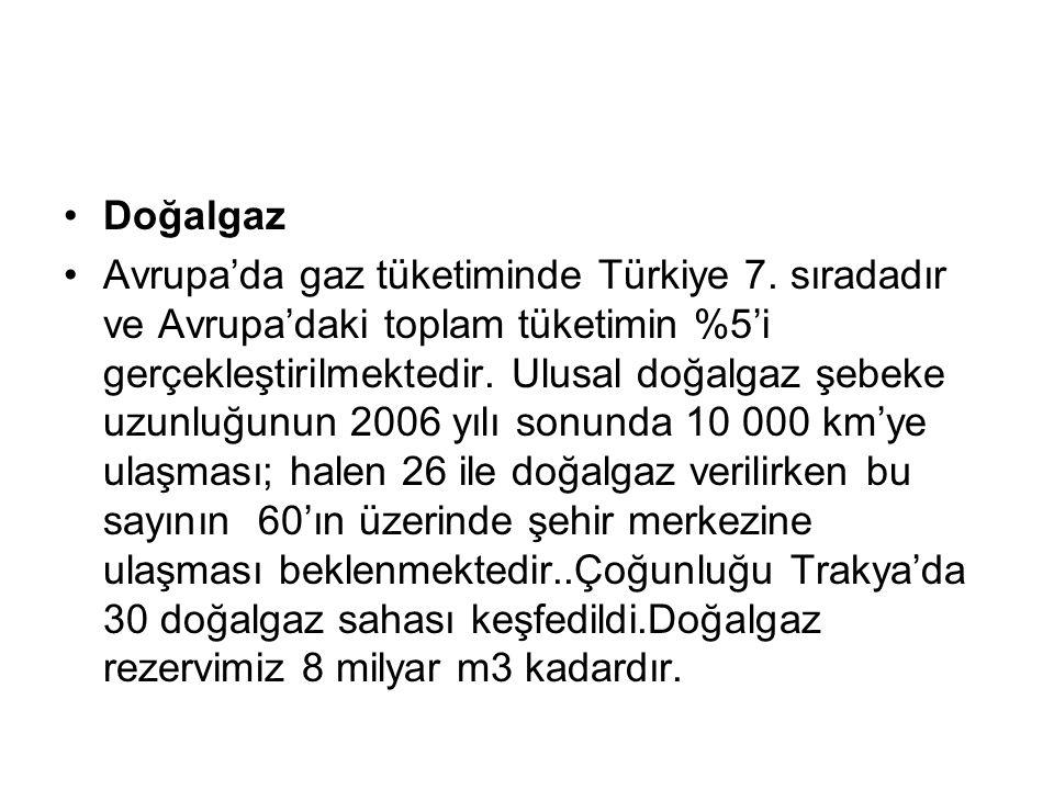 Doğalgaz Avrupa'da gaz tüketiminde Türkiye 7. sıradadır ve Avrupa'daki toplam tüketimin %5'i gerçekleştirilmektedir. Ulusal doğalgaz şebeke uzunluğunu