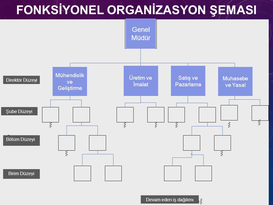 21 FONKSİYONEL ORGANİZASYON ŞEMASI Genel Müdür Mühendislik ve Geliştirme Üretim ve İmalat Satış ve Pazarlama Muhasebe ve Yasal Direktör Düzeyi Şube Dü