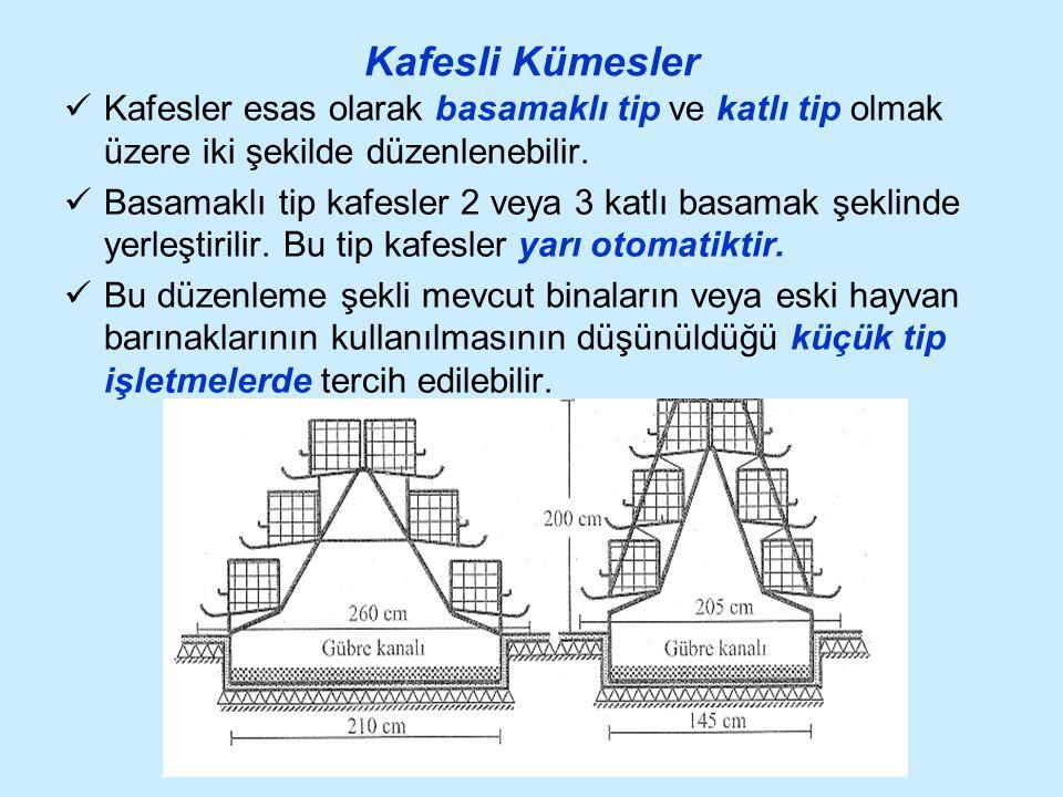 Kafesli Kümesler Kafesler esas olarak basamaklı tip ve katlı tip olmak üzere iki şekilde düzenlenebilir. Basamaklı tip kafesler 2 veya 3 katlı basamak