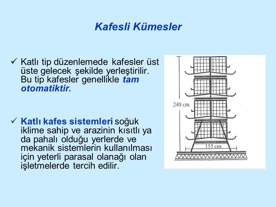 Kafesli Kümesler Katlı tip düzenlemede kafesler üst üste gelecek şekilde yerleştirilir. Bu tip kafesler genellikle tam otomatiktir. Katlı kafes sistem
