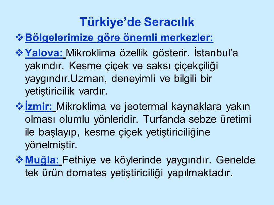 Türkiye'de Seracılık  Bölgelerimize göre önemli merkezler:  Yalova: Mikroklima özellik gösterir. İstanbul'a yakındır. Kesme çiçek ve saksı çiçekçili