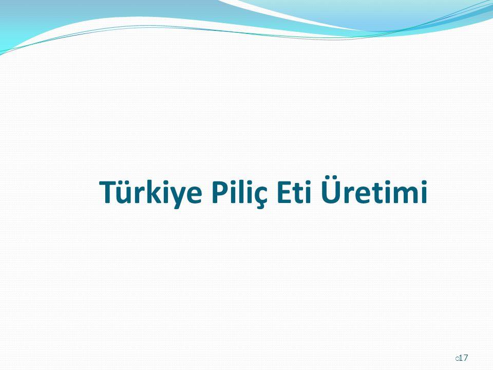 Türkiye Piliç Eti Üretimi  17